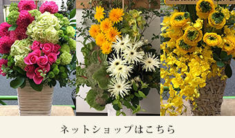 開店祝いのお花のネットショップはこちら