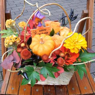 【ハロウイン時期の誕生日のプレゼントに】ハロウインアレンジ