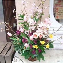 【お店の開店祝いや開業祝いのプレゼントに】和風アレンジ(桜)